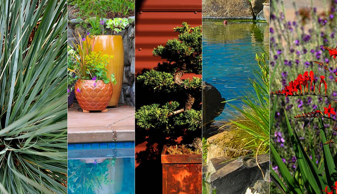 Laurie Sager Landscape Architect