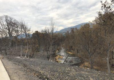 Bear Creek Greenway - Ashland