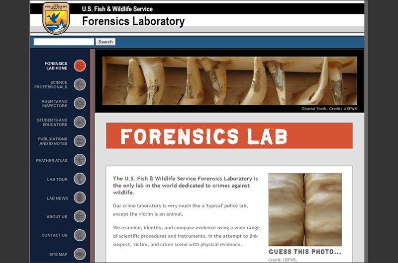 USFWS Wildlife Forensics Lab