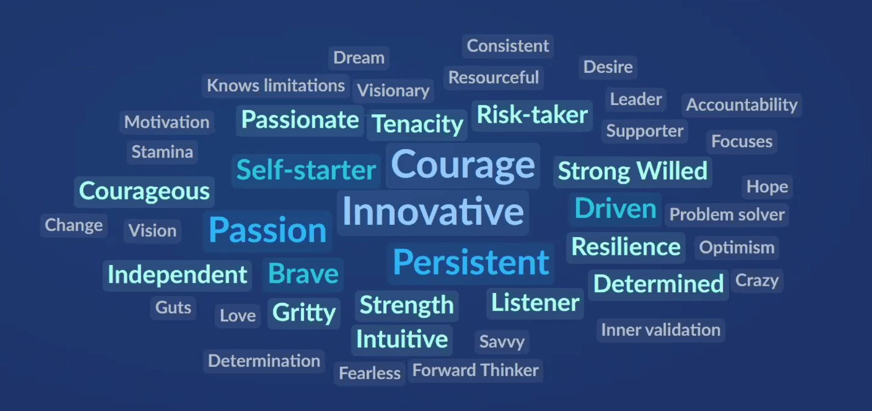 What are the qualities of an entrepreneur? Wordcloud